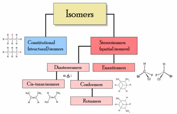isomers Isomers: Structure and Function
