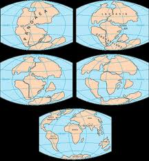 ... http://schoolworkhelper.net/plate-tectonics-continental-drift-proof