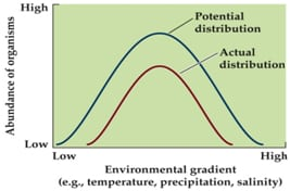 potential distrubtion vs Biotic and Abiotic Factors Influence on Ecosystems
