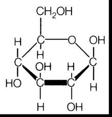 Biological Macromolecules Carbohydrates Biological Macromolecules: Carbohydrates
