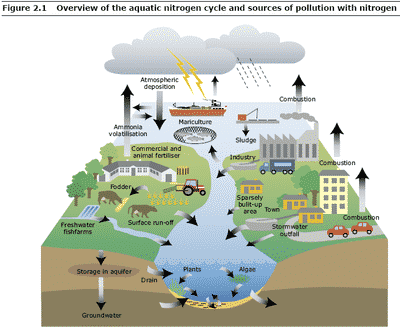 Water Pollution from ndustry Water Pollution from Industry