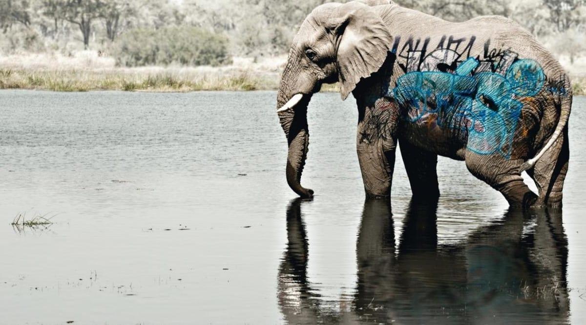 animals in danger of extinction because of deforestation