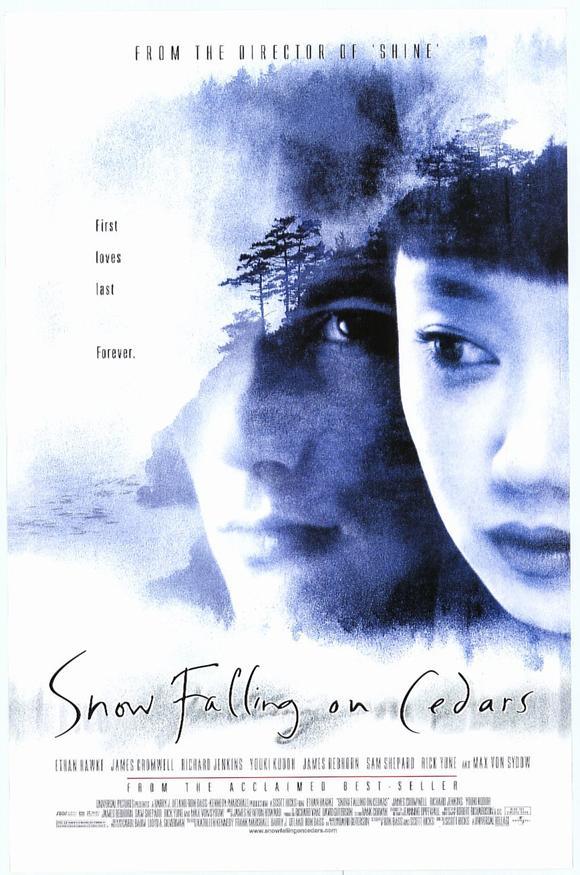 David gutersons snow falling on cedars essay