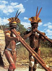 Kalapalo Indians 3 The Kalapalo Indians: Culture & Lifestyle