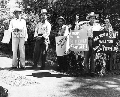 Hawaii 1946 Sugar Strike Hawaii: 1946 Sugar Strike