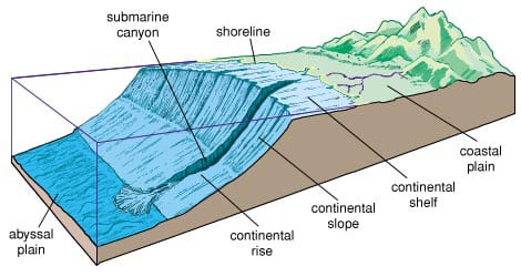 Mountain building formation faults stress folds for Define abyssal plain