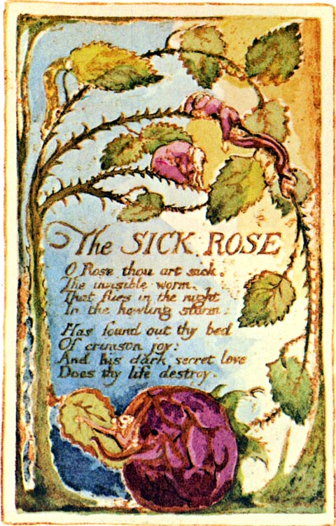 The Sick Rose Poem Analysis Schoolworkhelper